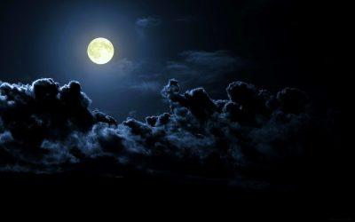 Туристы смогут слетать на луну с 2022 года