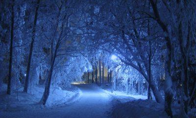 Минувшей ночью в Кузбассе был самый сильный ветер за декабрь