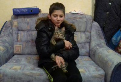 Бездомный кот спас мальчика от холода в Калининградской области