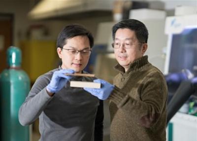 Учёные создали древесину, способную конкурировать со сталью и титаном
