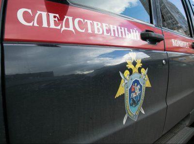 Кузбассовца будут судить за надругательство над 11-летней девочкой с умственными отклонениями