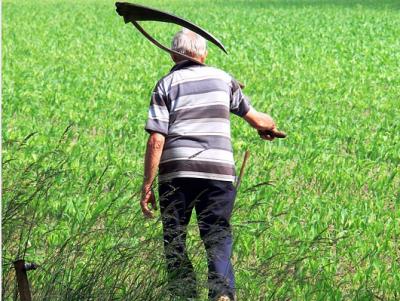 Кузбасский фермер убил своего работника и спалил труп