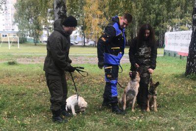 Первый кузбасский волонтёрский кинологический отряд «Сибирь» получит статус юрлица