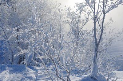 До -33°С: в Кузбассе снова резко похолодает