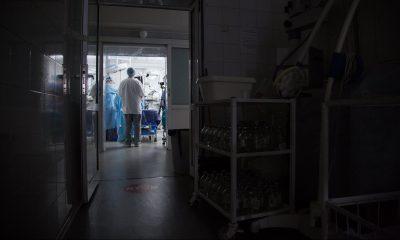 Кемеровская больница получила штраф за тараканов и антисанитарию