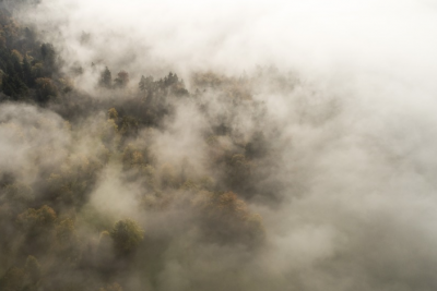 Синоптики рассказали, почему Кемерово накрыл густой туман