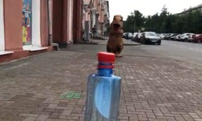 Видео: динозавр из Кемерова подключился к мировому флешмобу