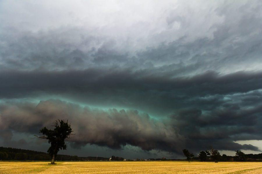 Ласковый август: синоптики рассказали, какая будет погода в Кузбассе
