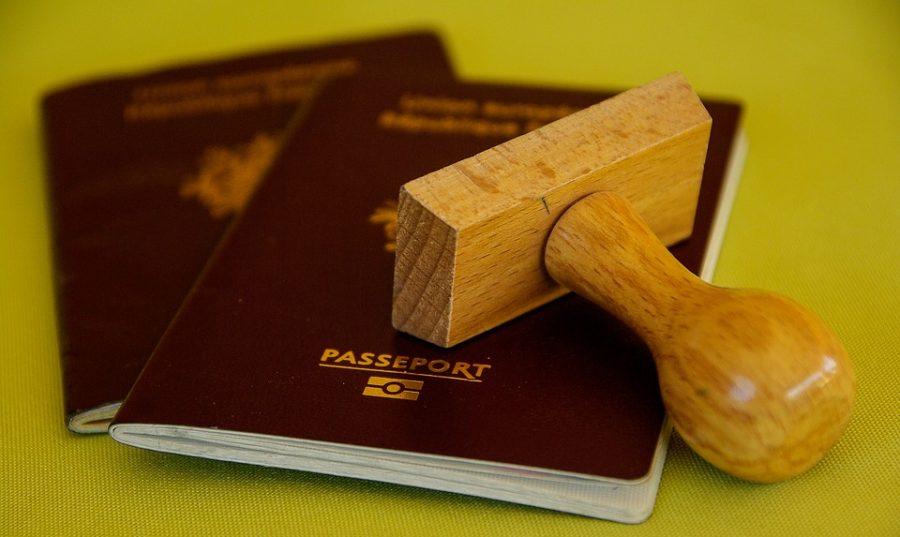Кемеровские таможенники рассказали, что вывозят из Кузбасса за границу