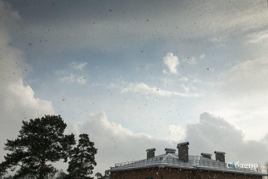 В Кузбассе снова резко похолодает