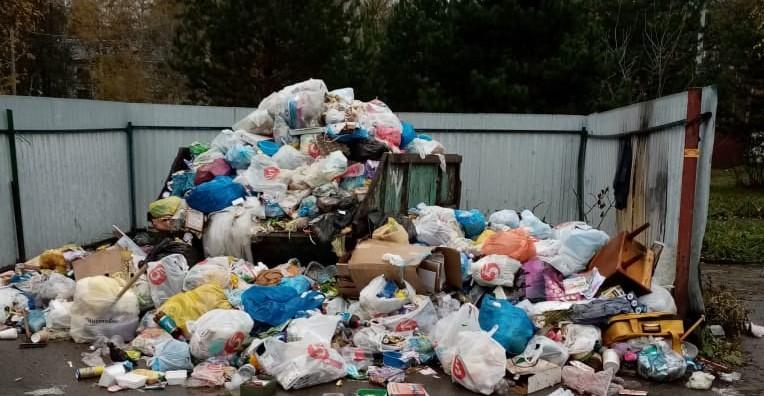 В кузбасском городе мусор не вывозили несколько недель